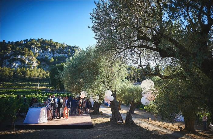 Cocktail de mariage sous les oliviers